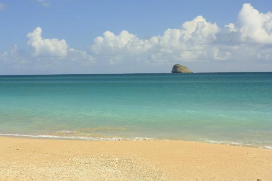 Hotel Au 'Ti Sucrier: une des nombreuses très belles plages autour de Deshaies