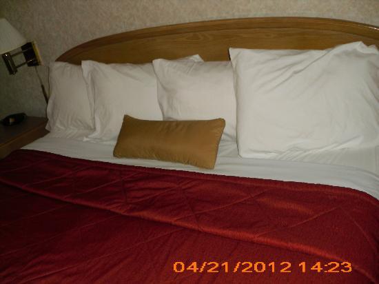 Ramada Anaheim Maingate North: King Size bed