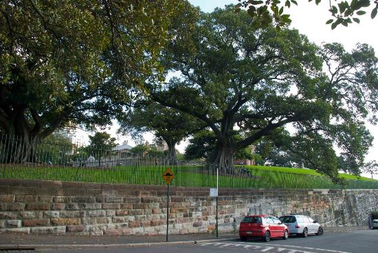 Park at the top of Millers Point