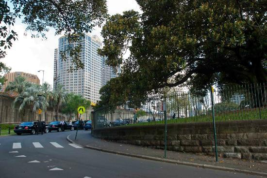 Millers Point: City views in Sydney