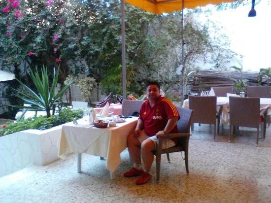 El Ons : Nice garden 2