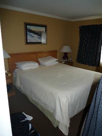 天堂村森林套房度假飯店照片