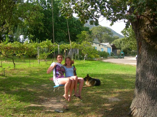 Fynbos Estate: the farm swing