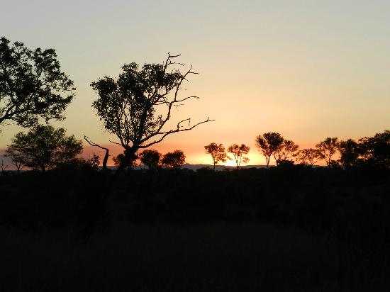 Londolozi Private Game Reserve: Sunrise