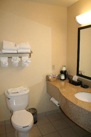 Hampton Inn Grand Junction : Bathroom, view 2.
