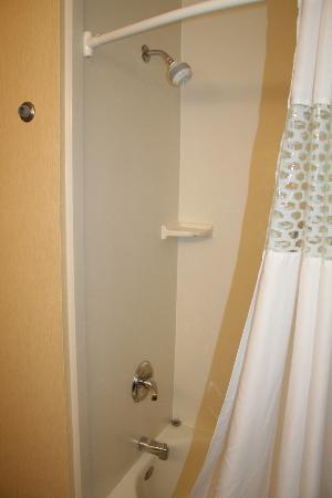 Hampton Inn Grand Junction : Tub/shower combo.
