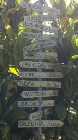 Gill's Lanai: Love these signs