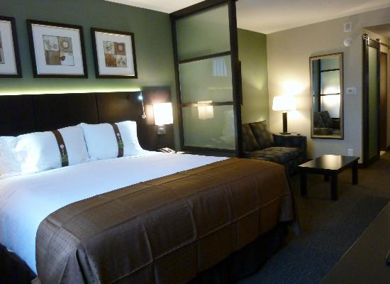 Holiday Inn Hotel & Suites Saskatoon Downtown: King room