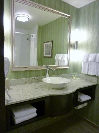 Holiday Inn Hotel & Suites Saskatoon Downtown: Guest room washroom