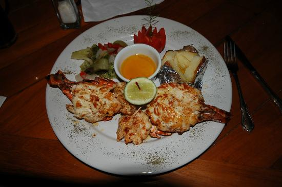 Villablanca Garden Beach Hotel: Lobster Dinner at Nemos