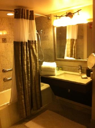 Hilton New York JFK: bathroom