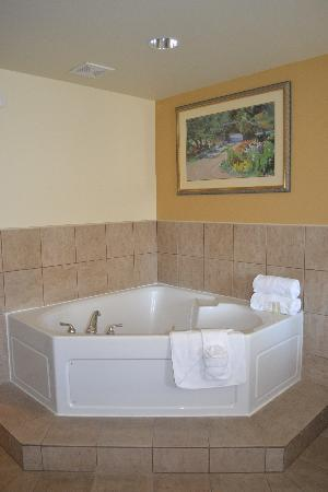 Holiday Inn Express & Suites: Hot tub