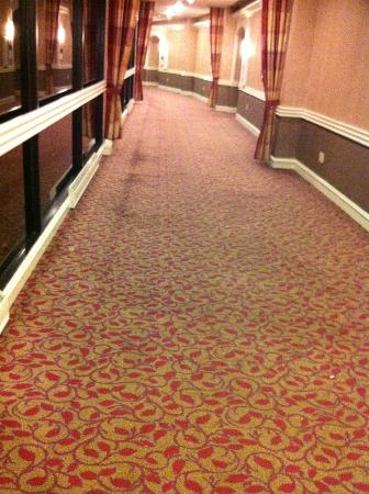 Sheraton Reston Hotel: dirty carpet in common aread