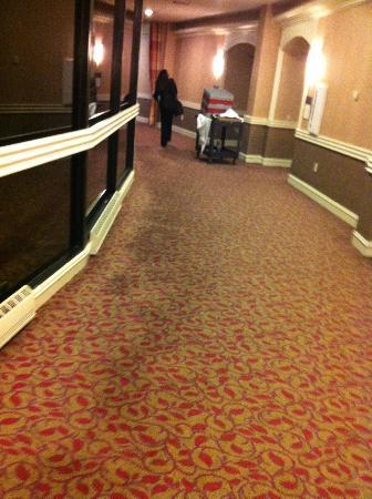 Sheraton Reston Hotel: corridor