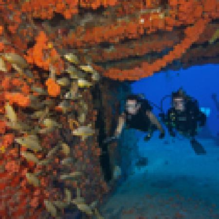 Historic Tavernier Inn Hotel: Dive the Florida Keys