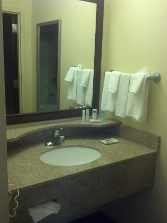 dimly lit sink area - Picture of SpringHill Suites Savannah Airport ...