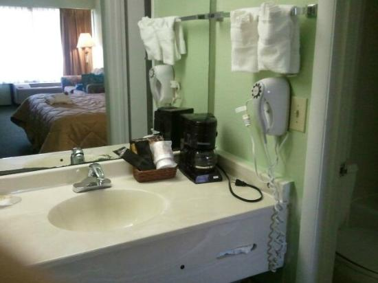 Ramada Hilton Head: sink & counter