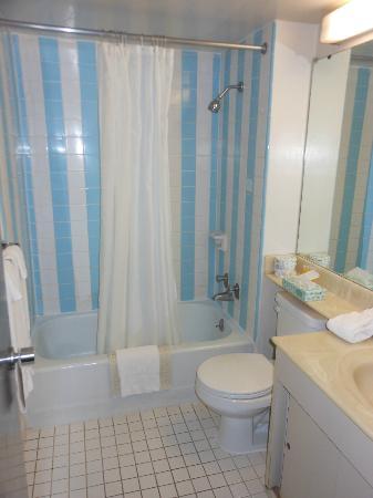 Pagoda Hotel: older bathroom but clean