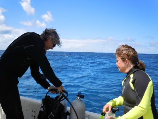 Shannas Cove Resort: Scuba Trip