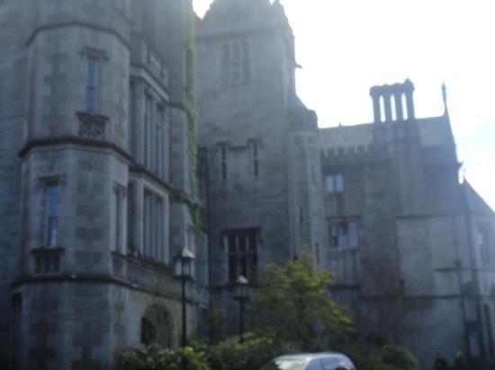 Adare Manor: adare