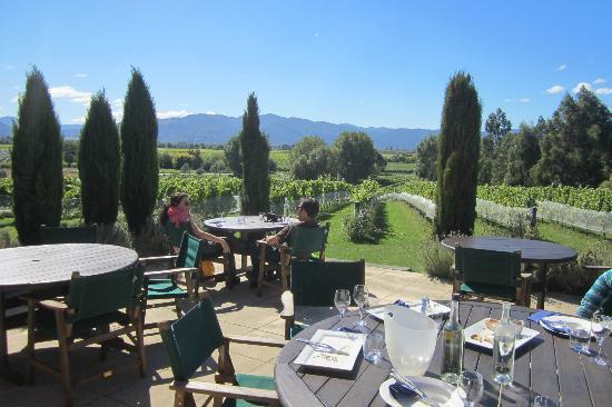Highfield TerraVin Cellar door and Vineyard Restaurant: View from the restaurant
