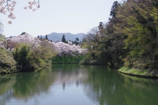 Tsuruga Castle : 鶴ヶ城