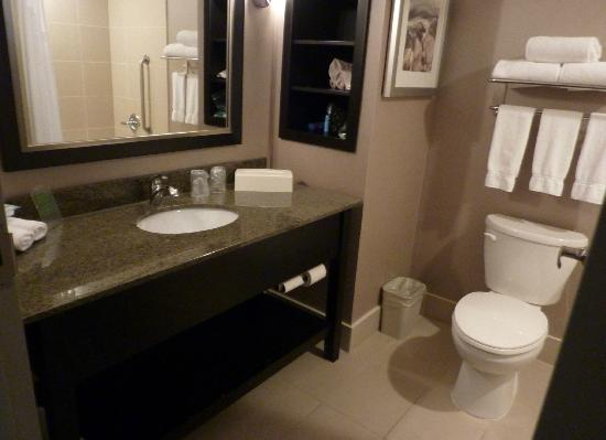 Holiday Inn Express & Suites Ottawa West - Nepean: Bathroom