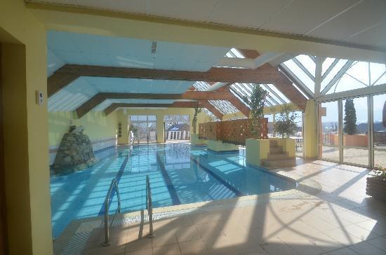 Hôtel Le Picors : piscine