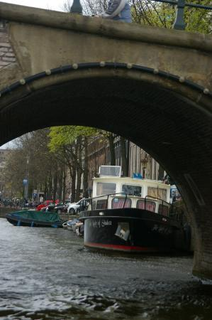 Gray Line Amsterdam : View from the Tour