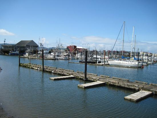 Harborview Inn & RV Park: Boat harbor across the street.