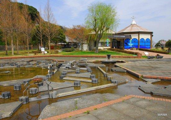Kasumigaura, Japan: 霞ヶ浦に面した小さな水族館