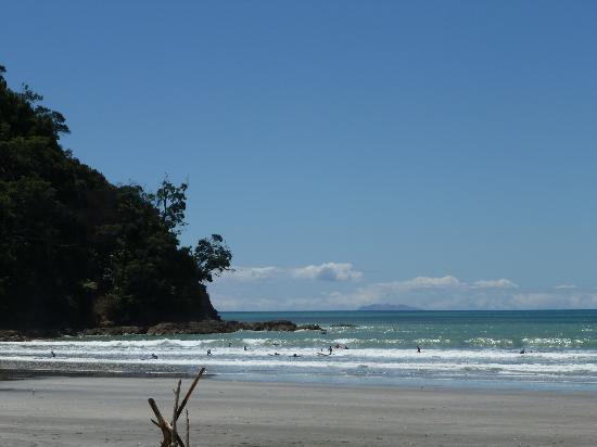 Ohope Beach: Surfers paradise Westend Ohope