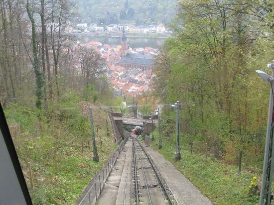 Konigstuhl Funicular (Bergbahn): Down the hill
