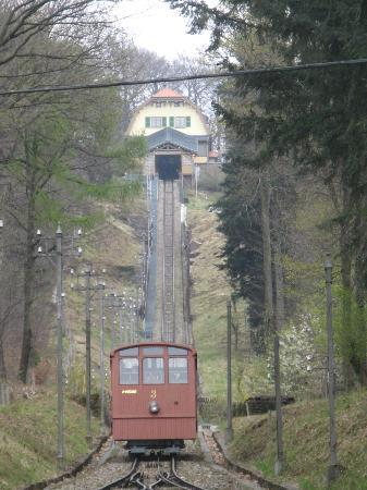 Konigstuhl Funicular (Bergbahn): Approaching the station