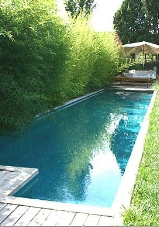 Les Hamaques: Piscina/canal de natación. Nada rodeado de vegetación