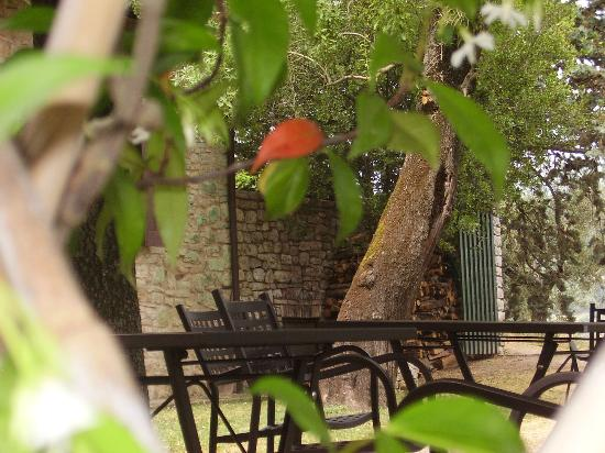 La Rocca di Mantignana: Freisitz Restaurant