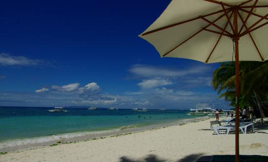 Henann Resort, Alona Beach: Alona beach, taken from Henann sunbeds