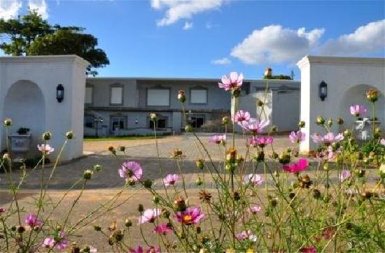 Dieu Donne Stellenbosch: getlstd_property_photo