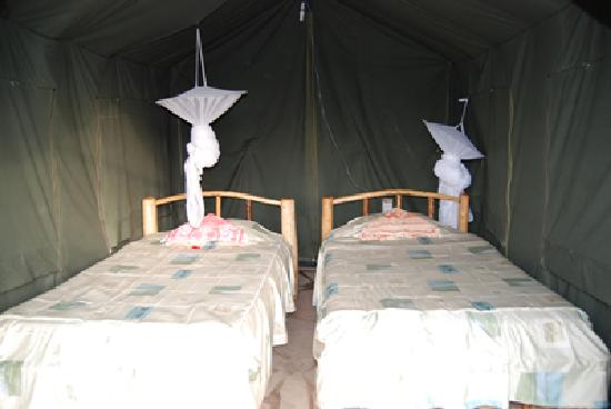 Big Time Safari Camp