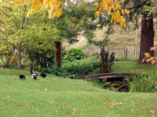 Retiro Park Lodge: 絵のような敷地内の風景