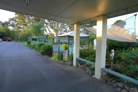 Tree Motel: The Entry