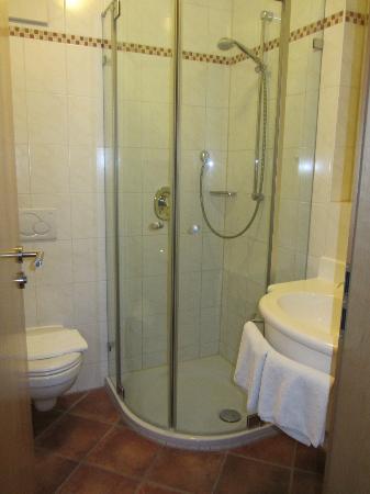 Hotel Reidinger : Lovely hot shower!