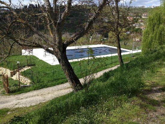 Agriturismo Al Palazzetto: piscina