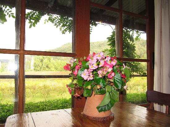 Cedar Creek Cottages & Wine: View from Timbercutters cottage dining room