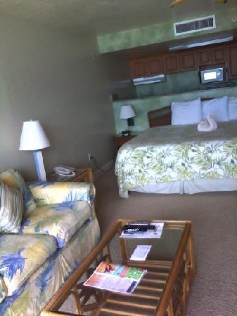Casa Playa Resort: 302