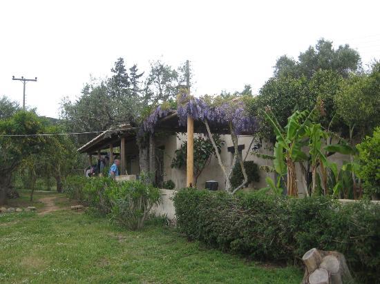 Logothetis Farm: Kalivi House