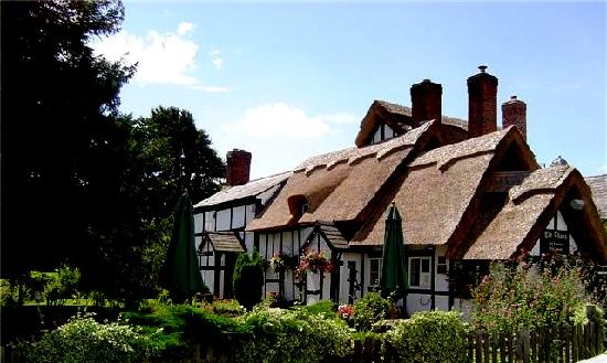 The Thatch Inn