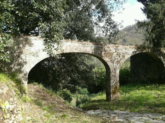 agriturismo la torre antico acquedotto agriturismo la torre vista su bagni di lucca