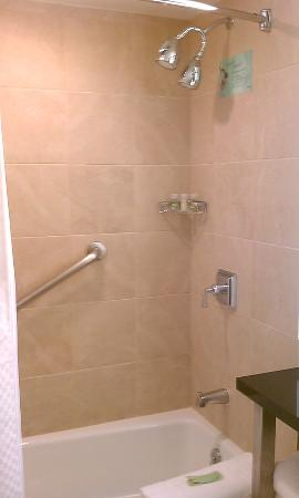 The Westin Alexandria: Room 763: shower