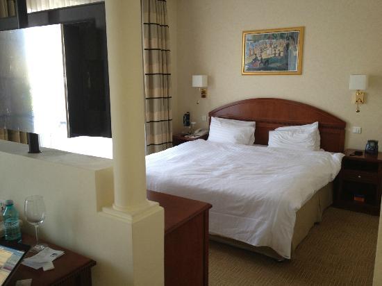 Athenee Palace Hilton Bucharest: Junior suite